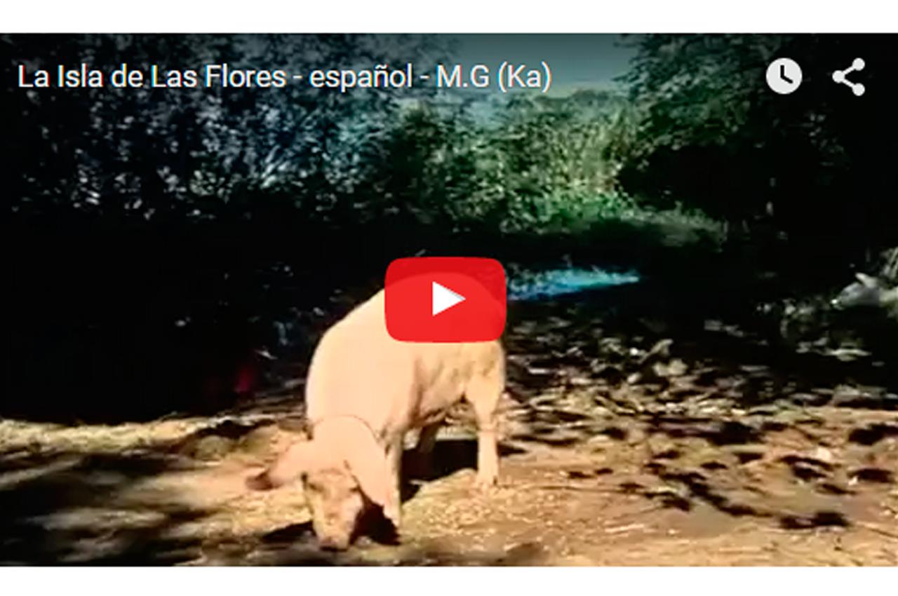 la-isla-de-las-flores
